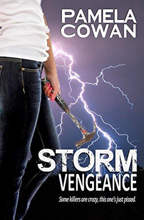 Storm Vengeance by Pamela Cowan