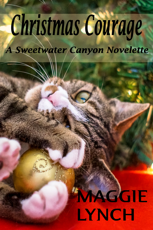 Cover Christmas Courage: A Sweetwater Canyon Novelette by Maggie Lynch