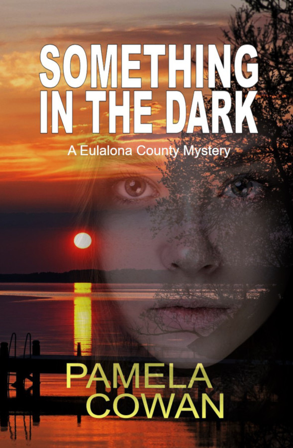 Cover for Something in the Dark by Pamela Cowan