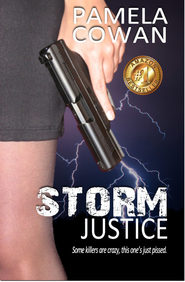 Cover for Storm Justice by Pamela Cowan
